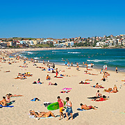 Sunbathers at Bondi Beach, Sydney, New South Wales, Australia