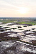 Aerial view of rice paddies and Tonle Sap, south of Siem Reap, Cambodia.