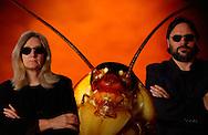 Deu, Deutschland: Fotografen Heid und Hans-Jürgen Koch mit einer Amerikanischen Schabe (Periplaneta americana) | Deu, Germany: Photographers Heidi and Hans-Juergen Koch with American cockroach (Periplaneta americana) |