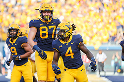 Oct 2, 2021; Morgantown, West Virginia, USA; West Virginia Mountaineers running back Leddie Brown (4) celebrates after running for a touchdown during the third quarter against the Texas Tech Red Raiders at Mountaineer Field at Milan Puskar Stadium. Mandatory Credit: Ben Queen-USA TODAY Sports