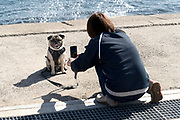 woman photographing her dog