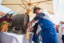 During the Old Vine harvest.Modra kavcina or Bleu de Cologne is more than 400 years old and it is listed in the Guinness Book of Records as the oldest vine in the world still producing fruit. Pictured on 22nd of September in Maribor, Slovenia.  Photo by Milos Vujinovic / Sportida