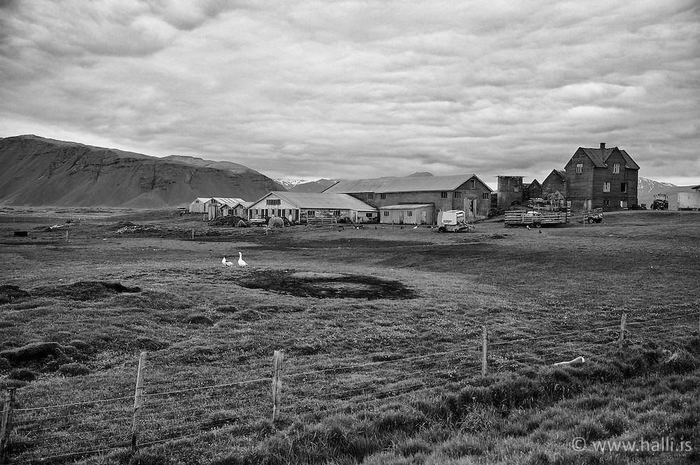 Old farm near Lindarbakki, Hofn in Hornafjordur, Iceland - Gamall sveitabær við Höfn