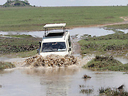 Africa, Tanzania, Serengeti National Park, Safari tourists in an open top land rover crossing a water barrier