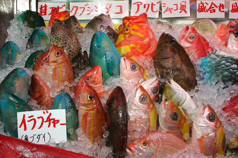 Snapper, parrotfish, and other fresh fish in the Naha City Makishi public market in Okinawa, Japan. Purchasers can bring their fish upstairs to the restaurants to have their fish cooked to order.  About a third of humankind lives within 50 miles of a coast, as Carl Safina notes in his essay in the book Hungry Planet: What the World Eats (p. 202-203).