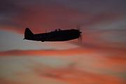 Republic P-47D Thunderbolt flying at sunset.