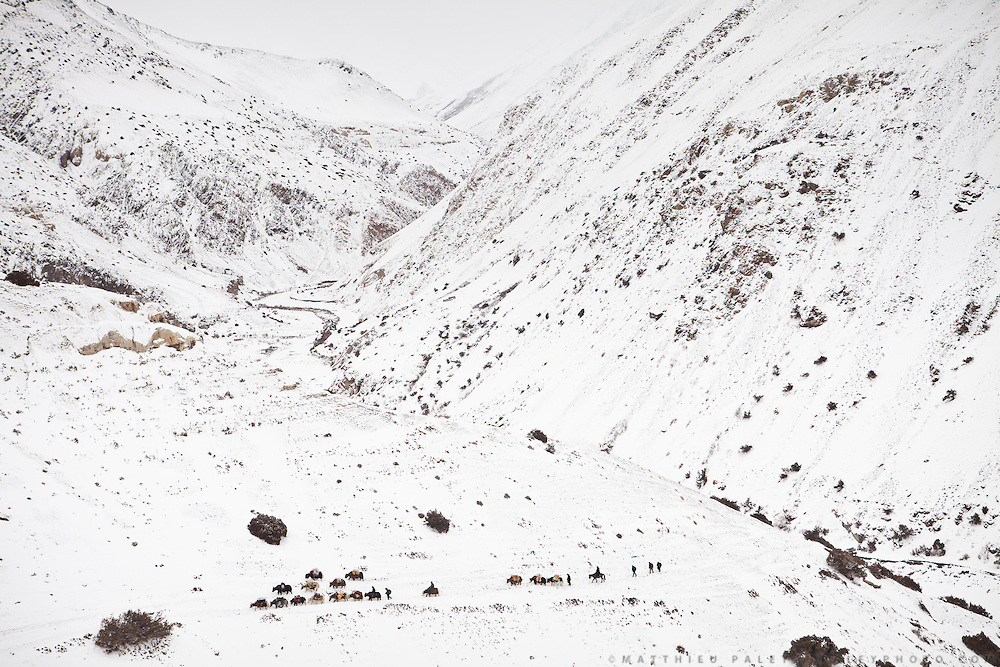 """A Kyrgyz caravan on its way to the lower valley. Boraq. From Zan Kuk to Zardibar (""""yellow door""""). ..Trekking back down from the Little Pamir, with yak caravan, over the frozen Wakhan river."""