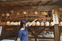 August 4, 2017 - Young woman wearing blue dress looking at wooden fortune telling plaques at Shinto Sakurai Shrine, Fukuoka, Japan. (Credit Image: © Mint Images via ZUMA Wire)