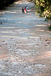 """La discesa che conduce alla scogliera di Porto Selvaggio - Reportage fotografico di Alessandro Caniglia, Alessandro De Matteis e Dario Luceri - Il Parco Naturale Regionale di Porto Selvaggio è situato lungo la costa ionica e ricade nel comune di Nardò (Lecce). Definito come """"area di notevole interesse pubblico"""" già nel 1939, è stato effettivamente istituito come Parco nel 2004. I suoi limiti sono compresi tra la baia di Frascone (a nord) e la Torre dell'Alto (a sud). Ha una estensione complessiva di circa 1000 ettari.Porto Selvaggio è una delle zone tra le più incontaminate del litorale Ionico, con un paesaggio caratterizzato da una pineta di ca. 300 ettari e da una macchia mediterranea ricca di acacee e ginestre..Lungo la costa sono presenti molte cavità carsiche, con varie insenature, grotte sommerse.Per gli amanti della natura il paesaggio è estremamente suggestivo in ogni stagione: molto silenzioso e rilassante in autunno, inverno e primavera, ricco di colori e festoso in estate, con il canto delle cicale che accompagna i visitatori lungo i sentieri e di tratti di scogliera che portano fino alla spiaggia. Il mare limpido e azzurro, con un fondale ricco di flora e fauna marina, è spesso meta di numerosi subacquei."""