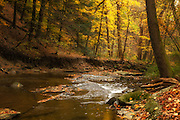"""Brandywine in Fall<br /> <br /> Available sizes:<br /> 18"""" x 12"""" print or canvas print<br /> See Pricing page for details. <br /> <br /> Please contact me for custom sizes and print options including canvas wraps, metal prints, assorted paper options, etc. <br /> <br /> I enjoy working with buyers to help them with all their home and commercial wall art needs."""