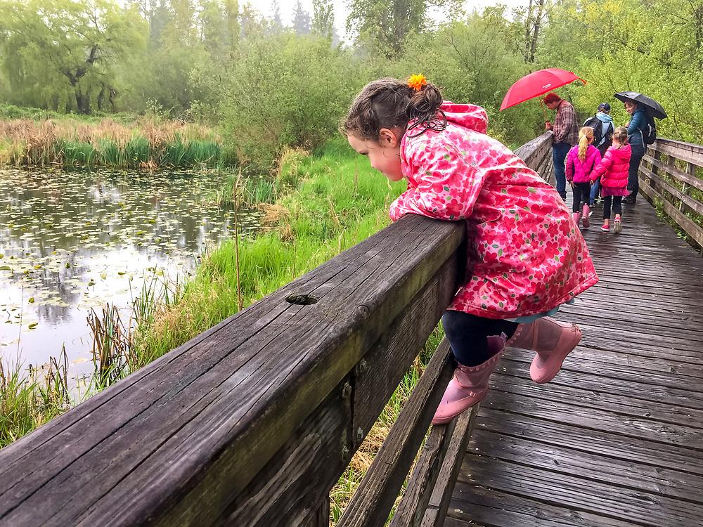 United Stares, Washington, Kirkland,Juanita Bay Beach Park. Children on the boardwalk on a nature walk.