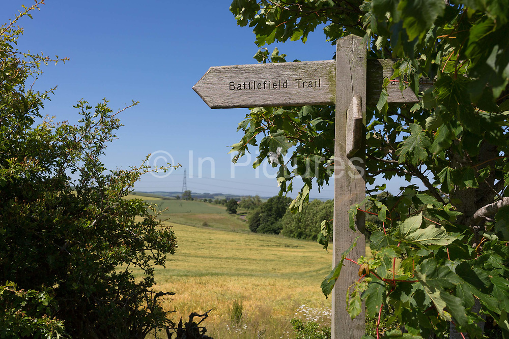 Now a peaceful and idyllic farmland landscape but once the battlefield of the Battle of Flooden, on 28th June 2019, in Branxton, Northumberland, England. The Battle of Flodden Field was undoubtedly the most famous confrontation between the English and Scots ever fought on English soil. It took place eight miles to the north west of Wooler near the village of Branxton on September 9th, 1513 in the reign of Henry VIII. Approximately 10,000 Scots and 5,000 English were slaughtered.