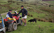 Richard Scholefield, general manager chats with Chris Overend, unit manager (on quad). Pakarae/Whangara B5 Partnership, SH 35, Gisborne. The partnership is a finalist in this year's Ahuwhenua Trophy BNZ Maori Excellence in Farming Awards. Photo: John Cowpland<br /> <br /> For more info: <br /> <br /> Allison Webber<br /> Media Consultant<br /> Phone: 04 905 8594<br /> Mobile: 021 465 678<br /> Email: alliewebber@paradise.net.nz