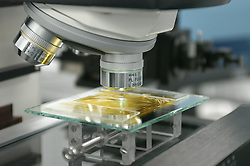 Stock photo of a sample on a slide under a microscope at NASA's Stardust Lab in Houston Texas