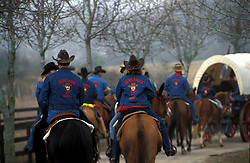 group of people riding horses in a trail ride