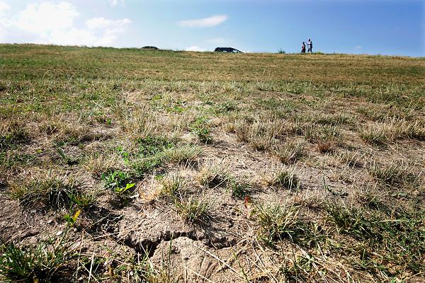 Nederland, Tiel, 13-7-2018Door het uitblijven van regen is de grond, kleigrond, van deze dijk langs de Waal gebarsten.Foto: Flip Franssen