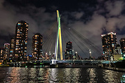 """Chuo-Ohashi Bridge, built 1993 across Sumida River, in Tokyo, Japan. Seen from a Sumida River Dinner Cruise on a Yakatabune traditional Heian Period Japanese boat. Depart from Harumi Asashio Small Craft pier on Harumi Island, at Reimei Bashi Bridge, 5-min walk from Kachidoki Station of Oedo line. Harumiya company's """"Odaiba & Skytree route"""". Seating is at horigotatsu low table with a sunken floor to comfortably stretch your legs. Rainbow Bridge has an arching suspension designed named for its shape (and changing night-time illuminations also resemble a rainbow)."""