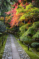 Rokuo-in garden employs the borrowed scenery of Arashiyama as a part of its design.<br /> The garden is of a classic design and well tended. The temple also offers lodgings to women.  The long entrance path leading from the main gate at Rokuoin Temple is lined with maple trees which burst into color during November