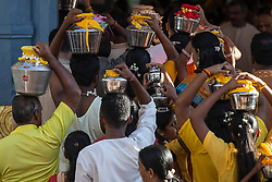 © Licensed to London News Pictures. 24/01/2016 Ipoh, Malaysia. Devotees carrying pots of milk on their heads enter the Kallumalai Murugan Temple in Ipoh, Malaysia, during the Thaipusam Festival, Sunday, Jan. 24, 2016. Photo credit : Sang Tan/LNP