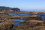Looking out at Crescent Bay from the Salt Creek Recreation Area, Washington