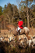 Jamie Greene, master of the hounds at the Middleton Place Fox Hunt during a break in the hunt at Middleton Place plantation in Charleston, SC. The hunt is a drag hunt where a scented cloth is used instead of live fox.