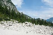 On the trail to the Vršič Pass, Alpe Adria Trail, Slovenia © Rudolf Abraham