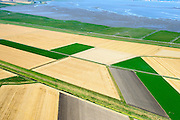 Nederland, Groningen, Oldambt,  05-08-2014; de Reiderwolderpolderdijk tussen de Reiderwolderpolder uit 1870 en de later voltooide de Carel Coenraadpolder uit 1924 (boven). Beide polders zijn ontstaan door landaanwinning, het inpolderen van kwelders van de Dollard.<br /> Reiderwolderpolder dike between the Reiderwolderpolder from 1870 and the later completed the Carel Coenraad polder from 1924 (above). Both polders were created through land reclamation<br /> luchtfoto (toeslag op standard tarieven);<br /> aerial photo (additional fee required);<br /> copyright foto/photo Siebe Swart