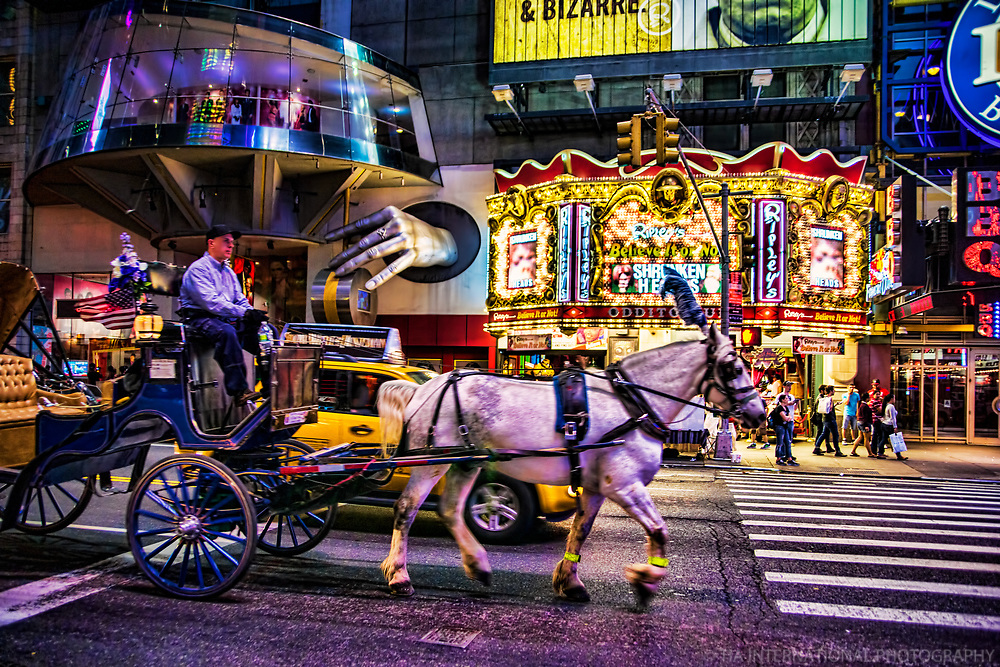 Horse Carriage & Ripley's Believe It or Not Odditorium, Times Square