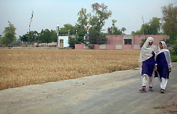 Young female students walk to Mukhtar Mai's house, where their school is located, Meerwala, Pakistan, May 3, 2005. In the background is the mosque where Mai was judged by a tribal council, as a punishment due to allegations against her younger brother, she was sentenced to be gang raped. Mai, 33, went against the Pakistani tradition of committing suicide when she brought charges against the men who raped her nearly three years ago. With money from the ruling she opened two schools, one for girls, the other for boys, citing that education is the only thing that will stop such acts from happening.