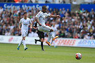 Wayne Routledge of Swansea city in action. Barclays Premier league match, Swansea city v Manchester city at the Liberty Stadium in Swansea, South Wales on Sunday 15th May 2016.<br /> pic by Andrew Orchard, Andrew Orchard sports photography.