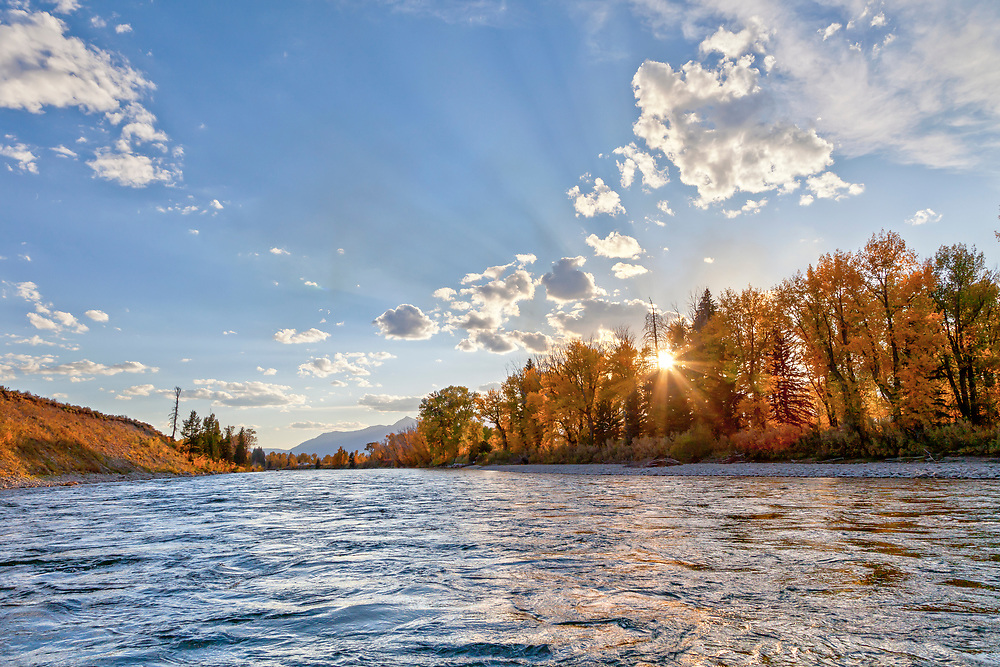 Waters edge view from a raft on the Snake River with Cottonwood Trees and sun bursting through fall colors.  Licensing and Open Editions