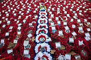 Wreaths and poppies in remembrance to commemorate the dead of the Great Wars laid at The Cenotaph on 14th November 2018 in London, United Kingdom. 2018 was the centerary of the end of the First World War.