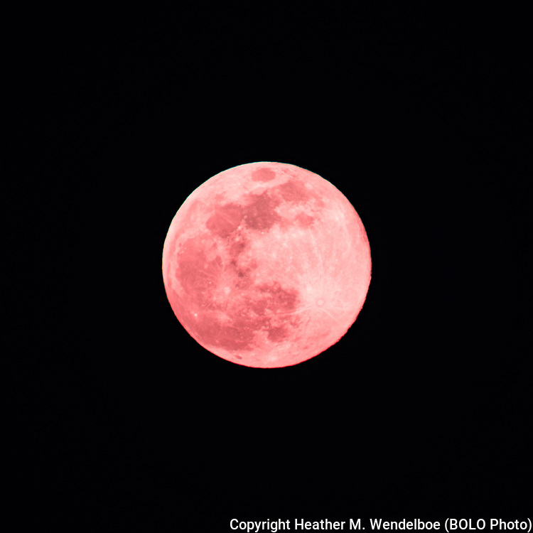 """""""Ring Around the Rosies""""<br /> Supermoon Pink Moon<br /> (Color Enhanced)<br /> 07 Apr 20<br /> Cheyenne, Wyoming"""