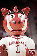 Nov 20, 2012; Fayetteville, AR, USA; Arkansas Razorbacks mascot Boss Hog performs during a time out at a game against the Florida A&M Rattlers at Bud Walton Arena. Arkansas defeated Florida A&M 89-60. Mandatory Credit: Beth Hall-US PRESSWIRE