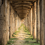 Patterns from the ancient teak struts supporting the U-Bein bridge. On the outskirts of Mandalay in Myanmar