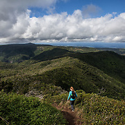 Trail to the summit of Black River Peak, the highest point in Mauritius.