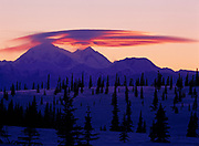 Winter view from Broad Pass of sunset light illuminating lenticular clouds above the Churchill Peaks of 20,320 foot Mount McKinley (Denali) in Denali National Park, Alaska.