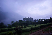 Looking through the mist towards Bwindi Impenetrable Forest from the Buhoma village in Uganda.