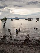 Bamboo stilt house settlement off Bodgaya island.