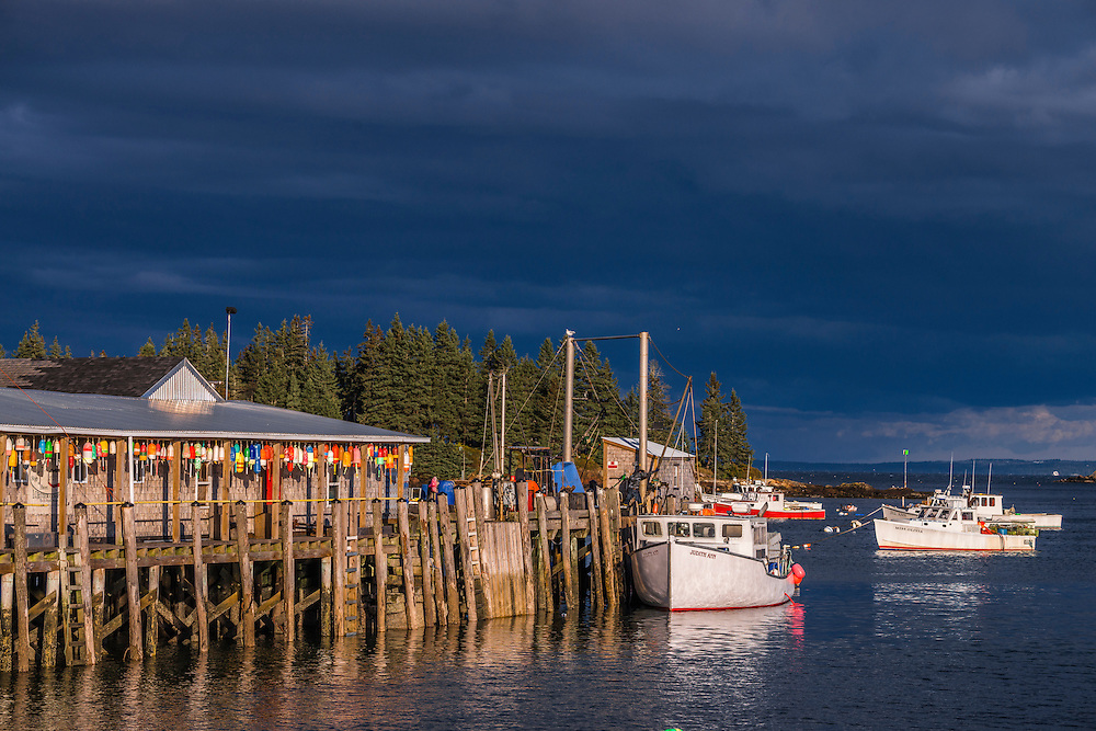 Row of colorful buoys hanging along pier, with lobster boats in strong last light, Owls Head, ME