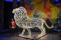 """© Licensed to London News Pictures. 22/11/2018. LONDON, UK. A staff member poses with a giant illuminated lion. Preview of the first """"Christmas at London Zoo"""", a festive transformation at ZSL London Zoo which features a one-mile illuminated pathway in a magical after-dark experience.  Historic buildings have been transformed for the event, with glowing fountains lighting the Grade I listed Lubetkin Penguin Pool and festive projections lighting up the historic Mappin Terraces.  The show runs 22 November to 1 January 2019.  Photo credit: Stephen Chung/LNP"""