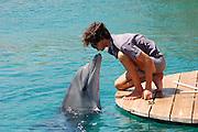 Israel, Eilat, Dolphin reef