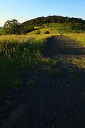 USA, Oregon, Baskett Slough National Wildlife Refuge, the Rich Guadagno Memorial National Recreation Trail on top of Baskett Butte