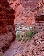 Redbud Canyon, Colorado River mile 39, Grand Canyon National Park, Arizona, USA; 2 May 2008; Pentax 67II, Velvia