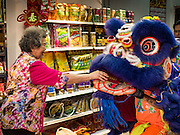 "08 FEBRUARY 2016 - BANGKOK, THAILAND: The owner of a Chinese grocery makes an offering to a lion dancer who performed in her shop in Bangkok's Chinatown district during the celebration of the Lunar New Year. Chinese New Year is also called Lunar New Year or Tet (in Vietnamese communities). This year is the ""Year of the Monkey."" Thailand has the largest overseas Chinese population in the world; about 14 percent of Thais are of Chinese ancestry and some Chinese holidays, especially Chinese New Year, are widely celebrated in Thailand.       PHOTO BY JACK KURTZ"