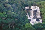 Pancada Grande Waterfall<br />in Atlantic Rain Forest<br />Itubera, Bahia State, ne BRAZIL  South America