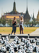 "04 MARCH 2016 - BANGKOK, THAILAND: Tourists take pictures of the ""1600 Pandas+ World Tour in Thailand: For the World We Live In and the Ones We Love"" exhibit on Sanam Luang in Bangkok. The 1600 paper maché pandas, an art installation by French artist Paulo Grangeon will travel across Bangkok and parts of central Thailand for the next week and then will be displayed at Central Embassy, a Bangkok shopping mall, until April 10. The display of pandas in Thailand is benefitting World Wide Fund for Nature - Thailand and is sponsored by Central Embassy with assistance from the Tourism Authority of Thailand and Bangkok Metropolitan Administration and curated by AllRightsReserved Ltd.     PHOTO BY JACK KURTZ"