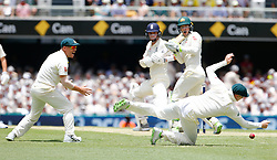 Australia's Steve Smith attemps to take a catch during day two of the Ashes Test match at The Gabba, Brisbane.