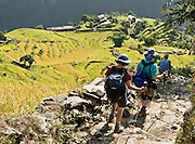 Trekkers with hiking poles walk by rice terraces near Kimche, along the trail to Annapurna Sanctuary in Nepal. Published in September/October 2008 Sierra Magazine, Sierra Club Outings.