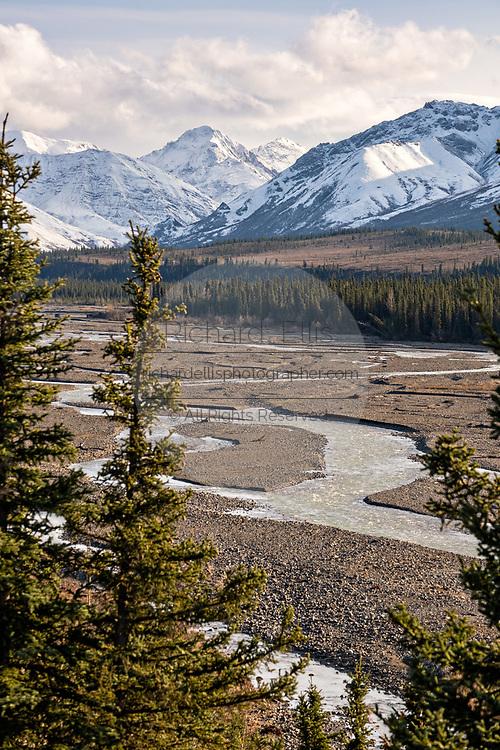An early season snow dusts the Alaskan Range of mountains behind the Teklanika River in Denali National Park, McKinley Park, Alaska